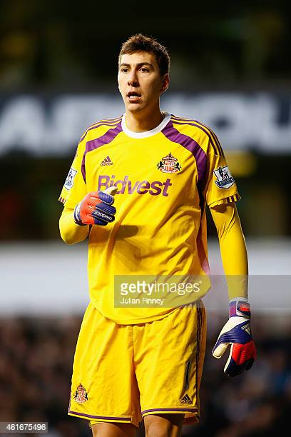Costel Pantilimon of Sunderland looks on during the Barclays Premier League match between Tottenham Hotspur and Sunderland at White Hart Lane on...
