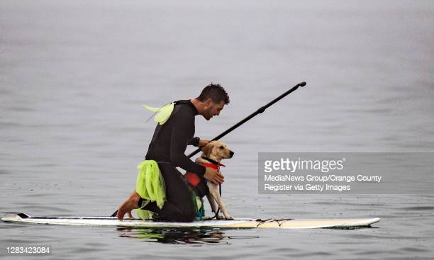 Costumed man and dog take part in Blackies 17th Annual Halloween event in Newport Beach on Saturday, October 31, 2020.