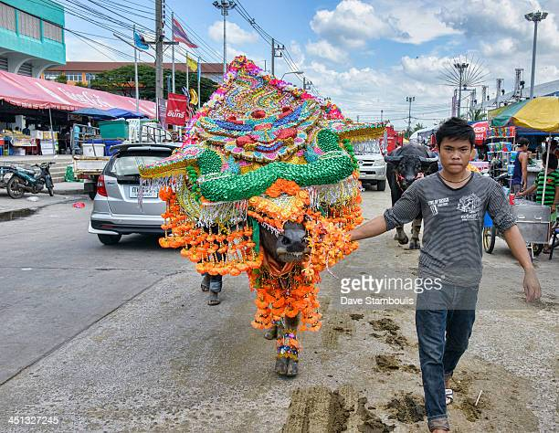 CONTENT] costumed water buffalo at the Chonburi Buffalo Racing Festival Thailand