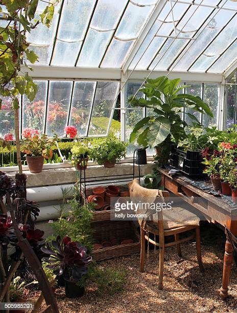 Cosy garden greenhouse