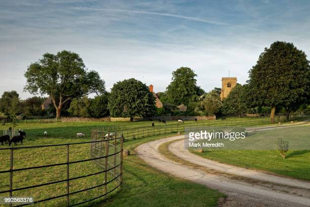 cotswold summer evening in aston le walls near banbury, northamptonshire, england - northamptonshire - fotografias e filmes do acervo