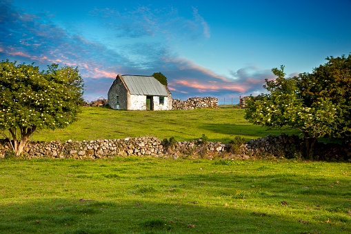 Cottage and meadow, Ireland - gettyimageskorea