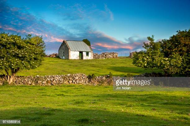 cottage and meadow, ireland - irlande photos et images de collection
