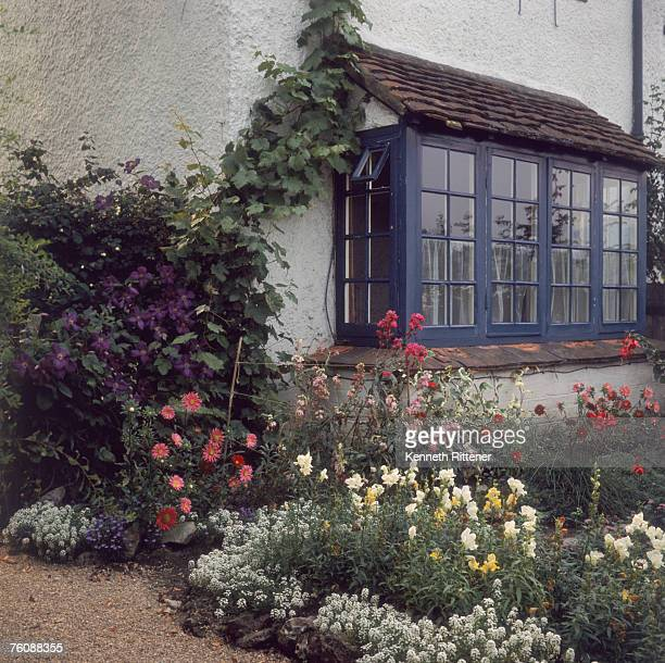 A cottage garden at Brockham Surrey 1967