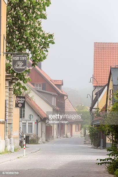 cottages and cobblestone streets in the town of visby, unesco world heritage site, gotland island, sweden, scandinavia, europe - michael stock photos and pictures