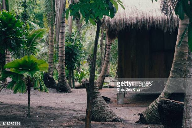 Cottages in a tropical resort