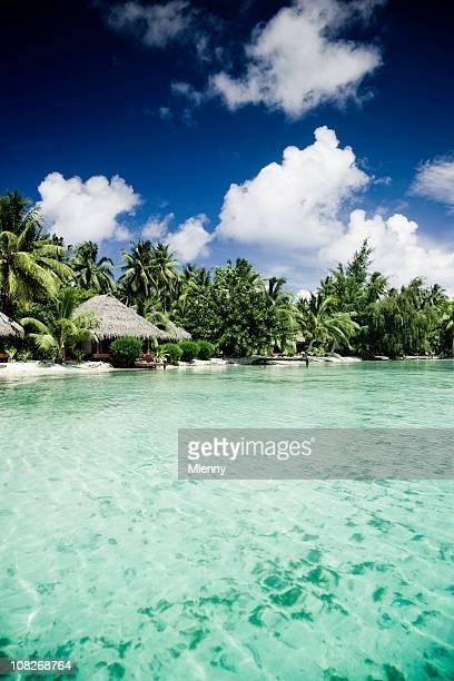 cottage sulla spiaggia - isole cook foto e immagini stock
