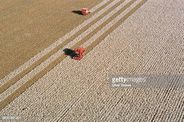 Cotton harvest, aerial view, New South Wales, Australia