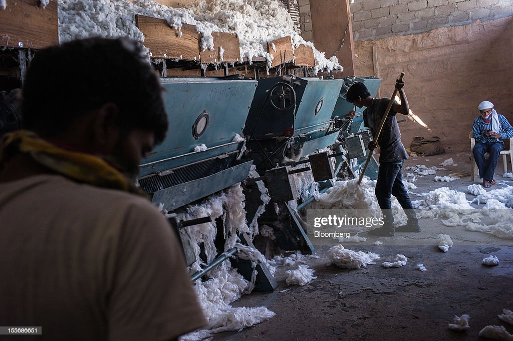 Cotton is fed through gins to separate fibers from seeds at a cotton processing plant in Mathania, in the district of Jodhpur in Rajasthan, India, on Monday, Oct. 29, 2012. Cotton shipments from India, the world's second-largest grower, are set to tumble, forcing the government to make record purchases to stem a slide in prices. Photographer: Sanjit Das/Bloomberg via Getty Images