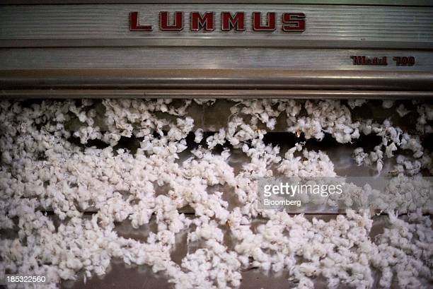 Cotton makes it way through a cotton separator at Joe's Bayou Gin in East Carroll Parish Louisiana US on Wednesday Oct 9 2013 Parts of the...