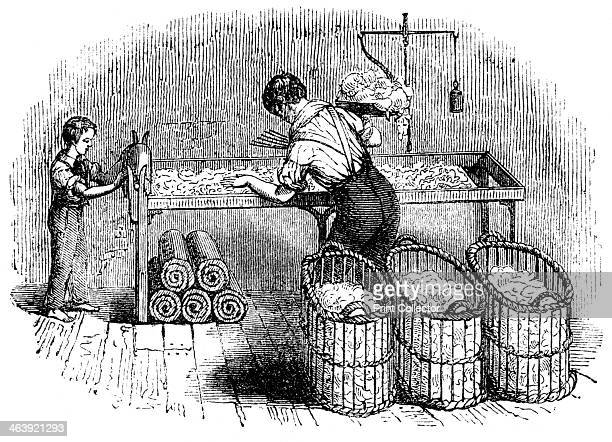 Cotton manufacture c1845 An adult 'hand' with a boy assistant forming cotton into 'laps' so that it could be put into the carding machine in a...