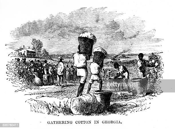Cotton picking in Georgia United States Paris National Library