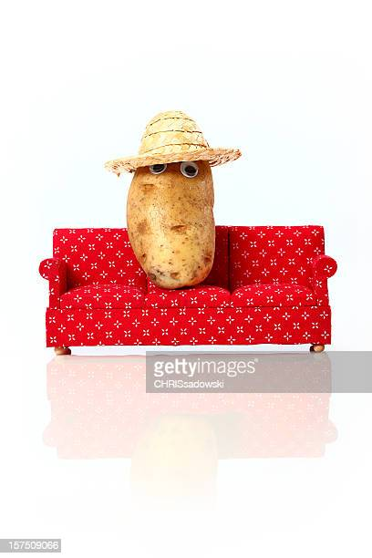 Couch Potato on Vacation