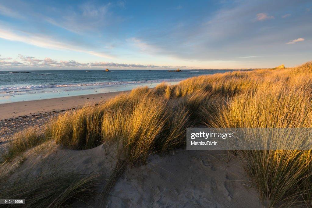 Coucher de soleil dans les dunes du Finistère Nord : Stock Photo