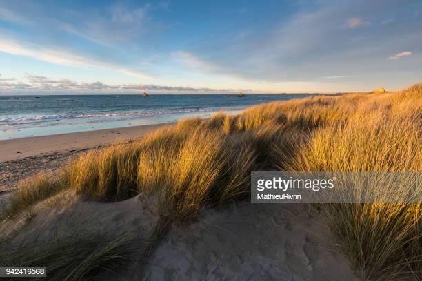 coucher de soleil dans les dunes du finistère nord - bretagne photos et images de collection
