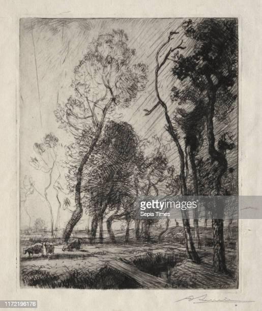 Coucher de Soleil derriere les Arbres, 1909. Auguste Louis Lepere . Etching.