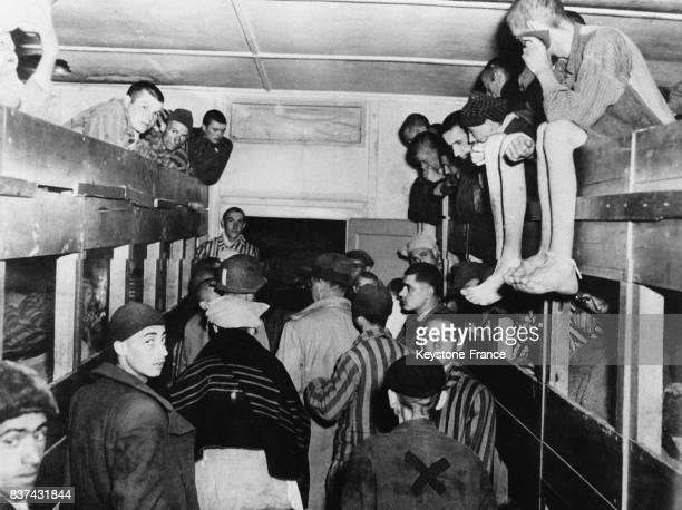 Couchettes de déportés en planches et superposées dans le camp de Dachau Allemagne en 1945