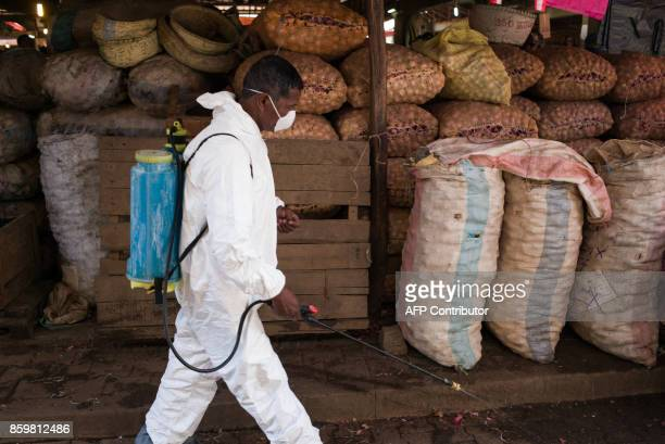 A council worker walks past sacks of potatoe as he sprays disinfectant during the cleanup of the market of Anosibe in the Anosibe district one of the...