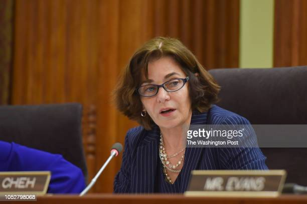 Councilmember Mary M Cheh speaks as the DC City Council votes to confirm Peter J Newsham as new chief of DC Metropolitan Police at the Wilson...