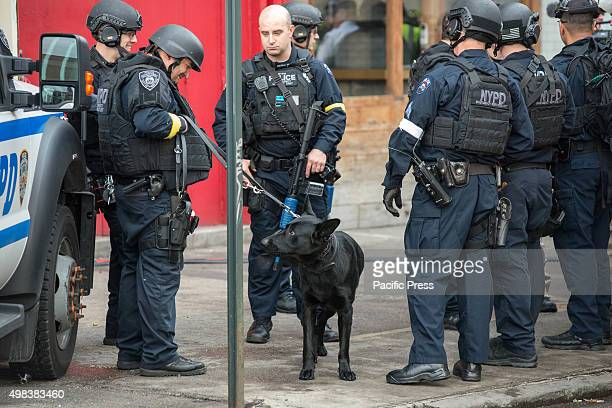 Counter terrorism officers participating in the drill stand with a bombsniffing dog as they prepare to enter the building in which the drill is...