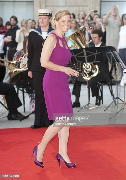 Countess Of Wessex Arriving At A Special 'Celebration Of The Arts' Event At The Royal Academy Of Arts