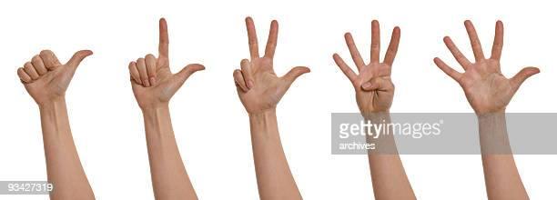 contando com as mãos xxxl - número 3 - fotografias e filmes do acervo