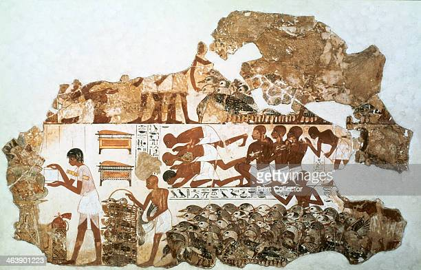 fragment of wall painting from the tomb of Nebamun Thebes Egypt 18th Dynasty c1350 BC This fragment is divided into two main registers In the lower...