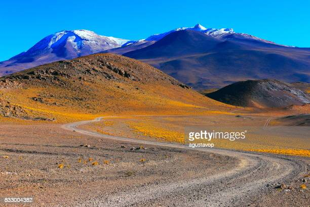 Country dirt road to Chilean Andes altiplano at sunrise and volcano, Idyllic Atacama Desert, snowcapped Volcanic steppe puna landscape panorama – Antofagasta region, Chilean Andes, Chile, Bolívia and Argentina border