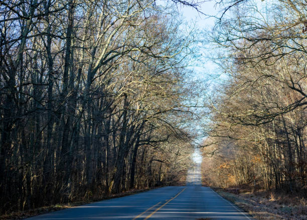 Country Drive On A Cold December Morning