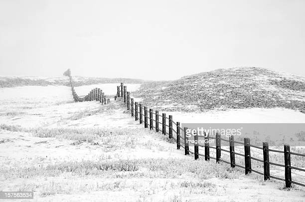 Country Fence in Fog