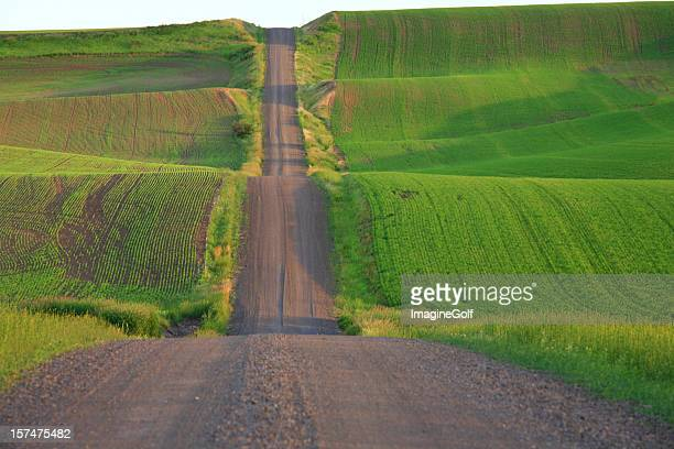 Country Gravel Road Through Rolling Farm Land