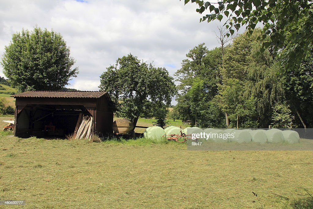Country Landscape with  plastic wrapped round hay bales : Stockfoto