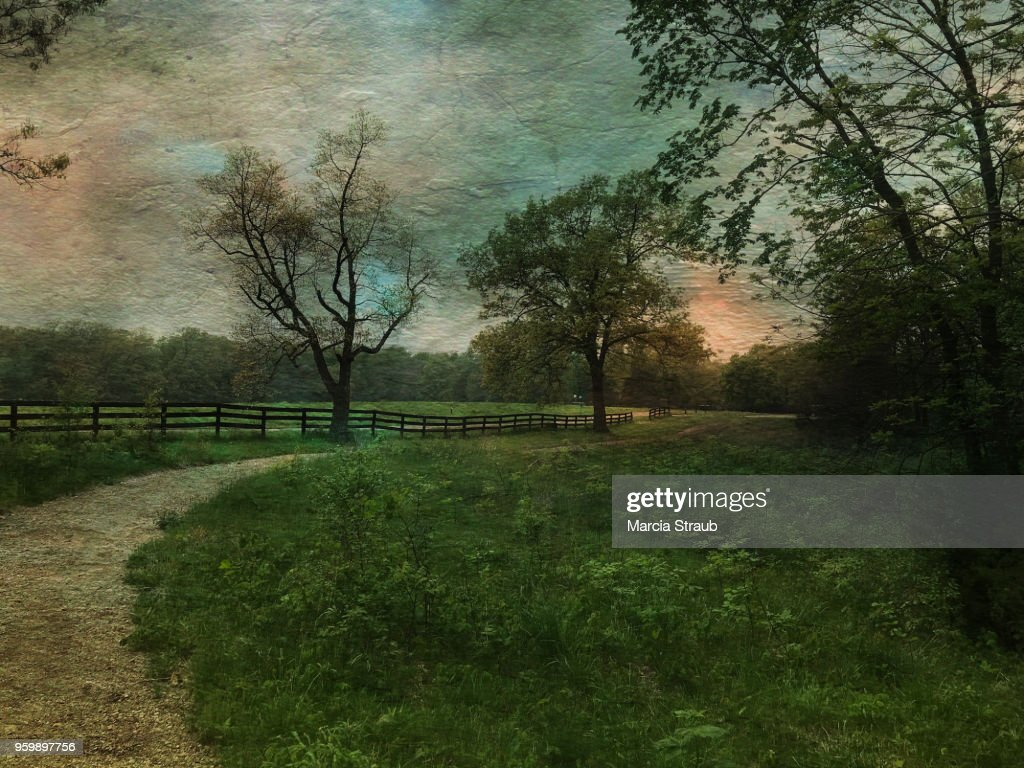 Country Lane at Sunset : Stock-Foto