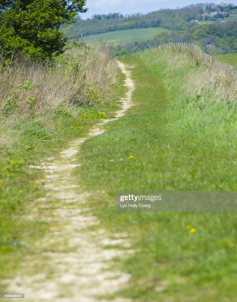 Country lane on Sussex Downs : Stock Photo