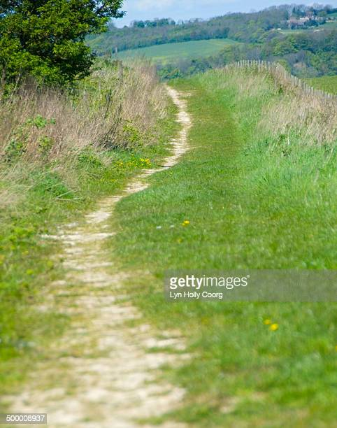 country lane on sussex downs - lyn holly coorg imagens e fotografias de stock
