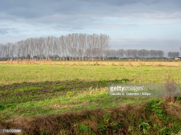 Country Near Sant'Angelo Lodigiano, Italy