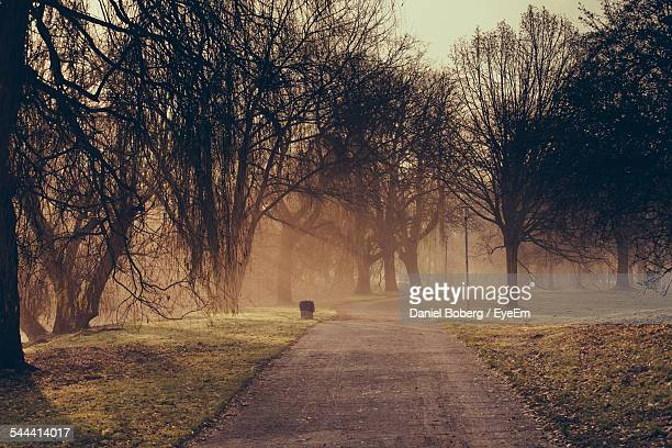 Country Road Amidst Grassy Field In Foggy Weather