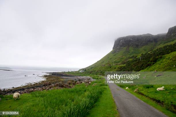 country road and coastline near balnahard, isle of mull, scotland - argyll and bute stock photos and pictures