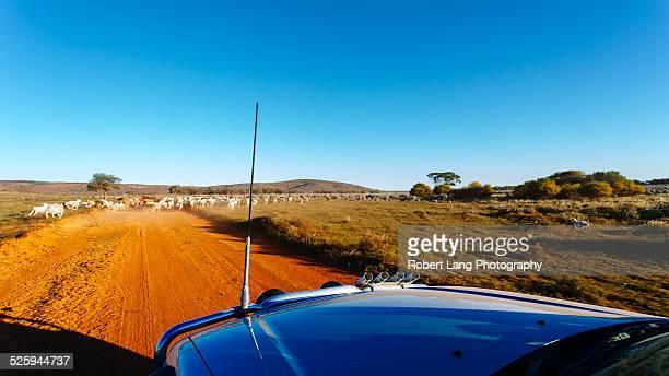 Country road, Australia