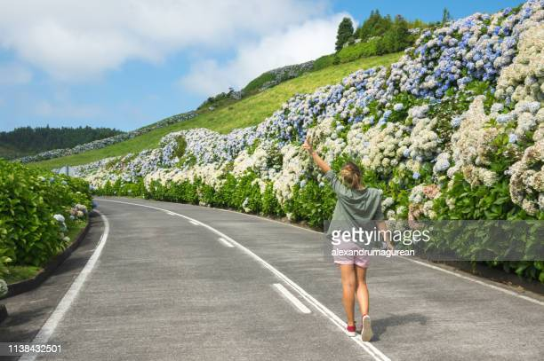 country road-azores - azores fotografías e imágenes de stock