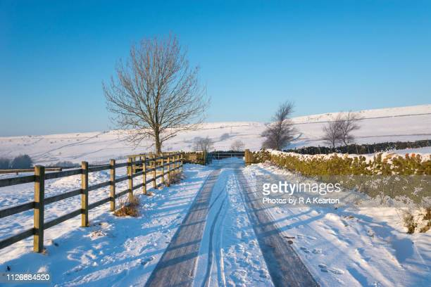 country road in a snowy winter landscape - february stock pictures, royalty-free photos & images