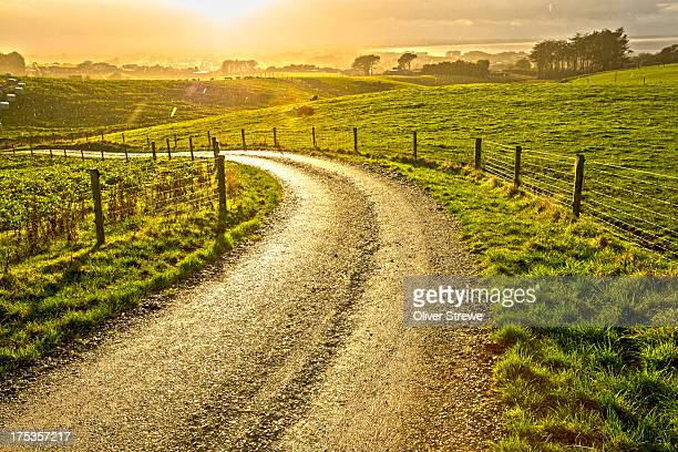 Country road in a sun shower