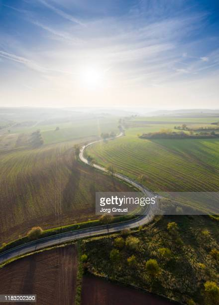 country road in autumn - north rhine westphalia stock pictures, royalty-free photos & images