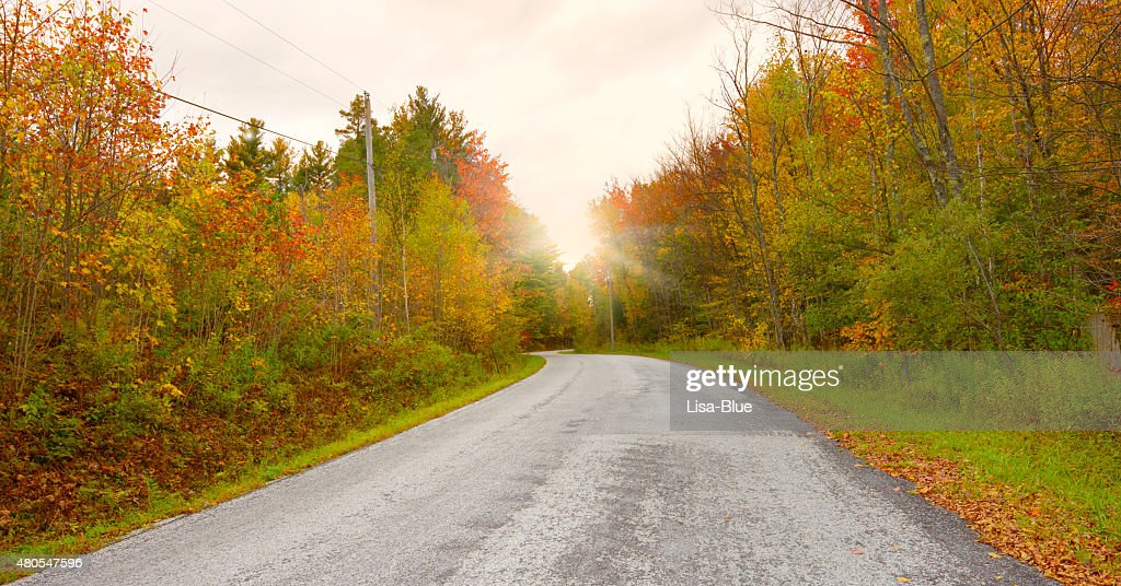 Country Road in Fall, Vermont : Stock Photo