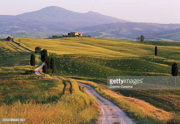 Country road in hilly landscape