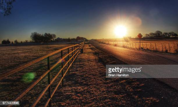 country road in morning, prosper, texas, usa - prosperity stock pictures, royalty-free photos & images