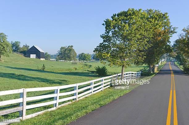 country road in rural farm land at morning - kentucky stock pictures, royalty-free photos & images