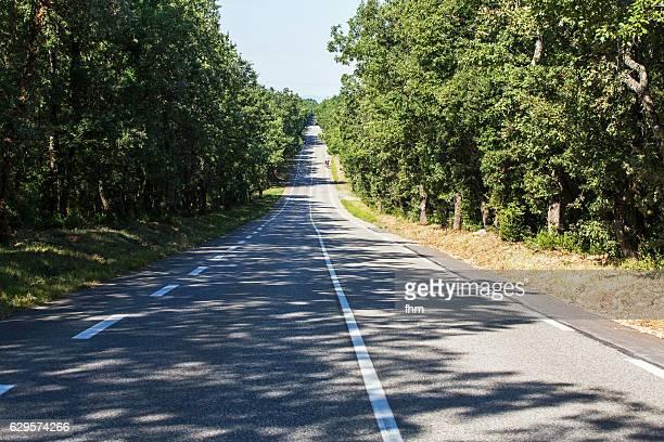country road in the forest - middelste deel stockfoto's en -beelden