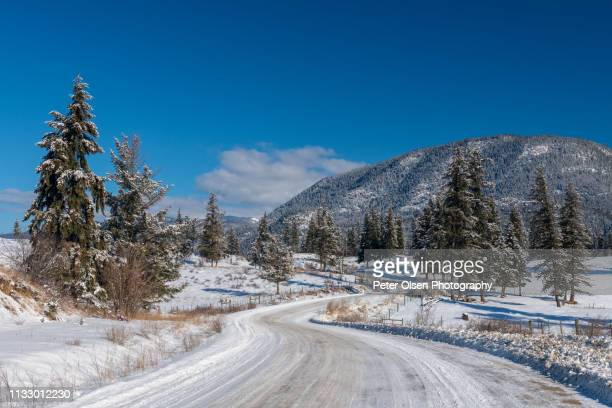 country road in winter - kamloops stock pictures, royalty-free photos & images