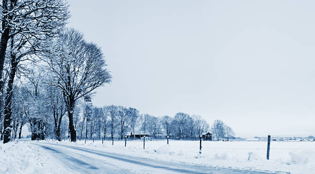 Country Road In Winter Wall Art
